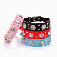 leather dog collars with bling