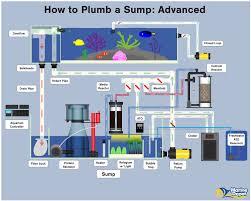 Freshwater Aquarium Sump Plumbing Design How To Plumb A Sump Basic Intermediate And Advanced