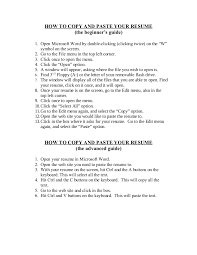 Resume Templates Copy And Paste Delectable How To Copy And Paste Your Resume
