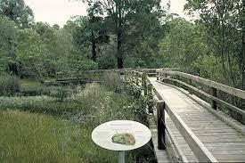ku ring gai wildflower gardens bosfor