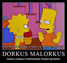 Mema Interretialia — DORKUS MALORKUS Carolus Linnaeus in ...
