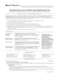 Best Format For A Resume Best Best Format For Resume Catarco