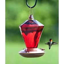 red glass hummingbird feeder ruby diamond perky pet antique bottle 16 oz capacity gl hummingbird feeders