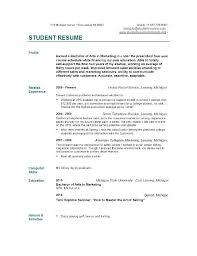 Sample Resume Curriculum Vitae – Amere