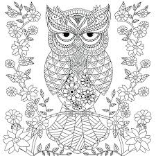 Coloring Page Owl Owl Coloring Pages Print Free Printable Cute Owl