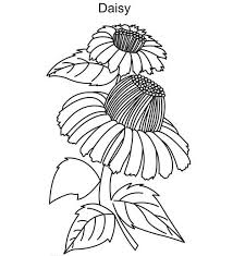 Small Picture Beautiful Daisy Flower Coloring Page Download Print Online