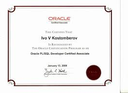Professional Web Developer Resume Template Vntask Within Oracle Pl