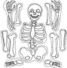 Small Picture a skeleton to be cut out C3 W2 can be used for younger