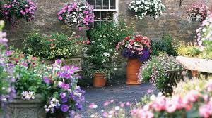 container gardening ideas 19 planting