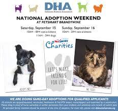 petsmart animals dogs. Simple Animals PetSmart National Adoption Weekend U2013 Brandywine To Petsmart Animals Dogs V
