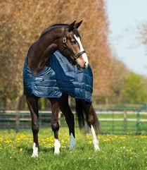 Horseware Rug Liner 100gm