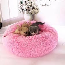 Pet Bed Size Chart Pin On Diy