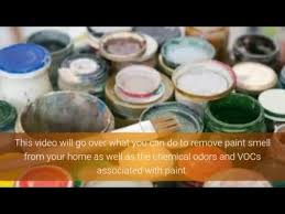 how to remove paint smell