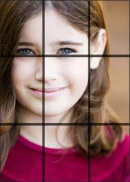 Image Tips The Simple Rule Of Thirds Steves Digicams Forums Silly Pinterest 12 Best Thirdsthirdsthirds Images Rule Of Thirds Photo Tips