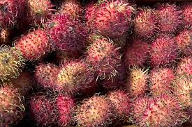 10 exotic fruits to try about exotic