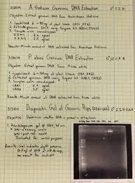 Lab Notebook Example Team Vanderbilt Notebook 2014 Igem Org