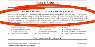 Perfect Professional Resumes