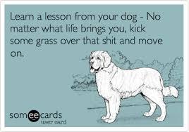 Πάρε ένα μάθημα από το σκύλο σου...
