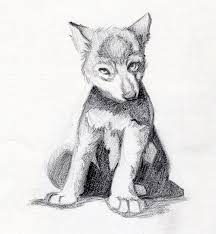 white wolf pup drawing. Beautiful Wolf Wolf Pup Drawing Puptaktera On Deviantart White D25 With White Wolf Pup Drawing I