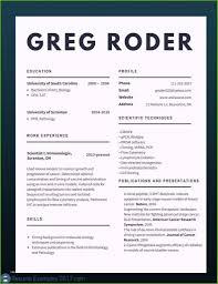Federal Resume Builder Template Free Printable Wizard Best