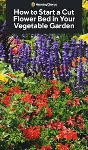 cut flower bed in your vegetable garden