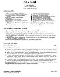 Sample Sales Manager Resume   Sales Resume Writing Services JFC CZ as