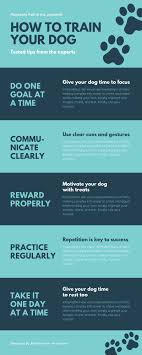 Infographic Process Design How Designers Do It 15 Easy Steps To Design An Infographic
