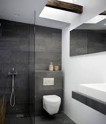 modern bathroom furniture. Male And Chromatic Modern Bathroom Ideas Trendy Furniture T