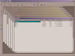 АРМ оператора склада interbase Дипломная работа ВКР ВКР  курсовая работа по програмированию
