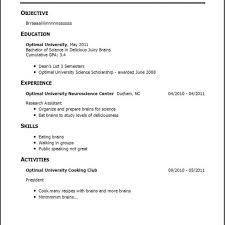 Resume Examples No Experience Work Samples