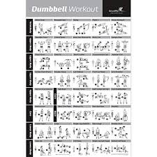 Dumbbell Exercises Chart Printable Gym Weights Amazon Com