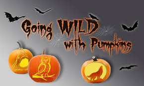 Elephant Pumpkin Carving Pattern Classy Pumpkin Carving Patterns From WWF Free Stencil Downloads World