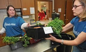 Key Peninsula cooperative is spearhead of Fresh Food Revolution –  Longbranch Chronicles