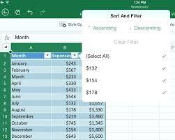 Ms Excel Free Download Free Excel For Ipad Take Advantage Of The Fact That Office Suite Of