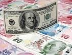 Image result for türkische lira