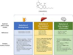 Cbd Dosage For Liver Cancer Cannabidiol Causes Activated