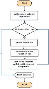Whale Classification Chart The Flowchart Of Whale Optimization Algorithm Based K