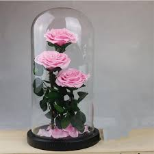 eternal flowers dried flowers preserved fresh flower live rose enchanted glass dome gift box artificial dried flowers