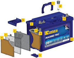 We did not find results for: The Century Marine Pro Difference
