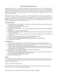 Internal Audit Resume Bongdaao Internal Audit Resume Resume Samples