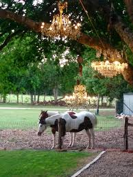 our initial vision when we created gruene estate was to create a one of a kind wedding venue in the heart of the texas hill country