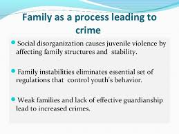 social disorganization theory 4