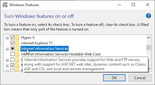 debug asp net core apps in iis express