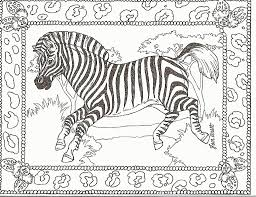 Small Picture Zebra Print Coloring Pages Many Interesting Cliparts
