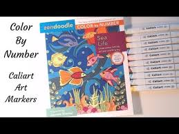Caliart Markers 100 Color Chart Zendoodle Color By Number Caliart Markers Please Read