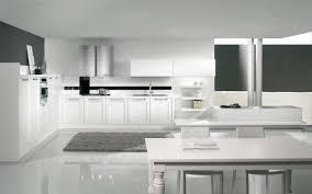 Cucine Di Lusso Americane : Cucine di lusso design avienix for