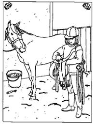 Het Paard Opzadelen Thema Paarden Kleuters Horse Theme Preschool