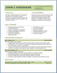 Best Professional Resume Template Commily Com