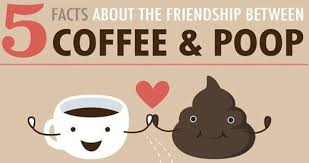 Quotes About Coffee And Friendship Amazing 48 Facts About The Friendship Between Coffee Poop Pictures Photos