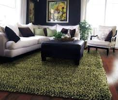 green rugs for living room green carpet for living room ideas green and brown living green rugs